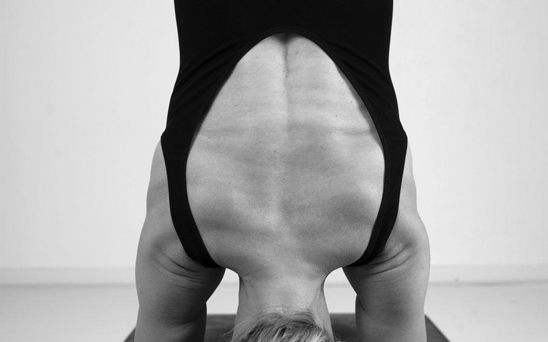 XL Yoga Workshop Inversies de omgekeerde houdingen